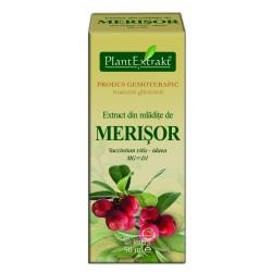 Extract din mladite de MERISOR PlantExtrakt