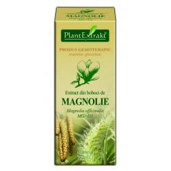 Extract din boboci de MAGNOLIE PlantExtrakt
