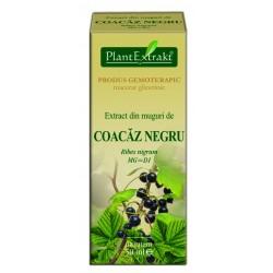 Extract din muguri de COACAZ NEGRU PlantExtract