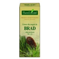 Extract din muguri de brad PlantExtrakt