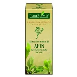 Extract din mladite de afin PlantExtrakt