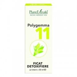 POLYGEMMA 11 - FICAT DETOXIFIERE PlantExtrakt